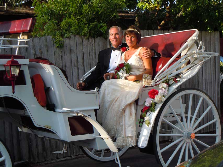 Wedding couple on a horse drawn carriage